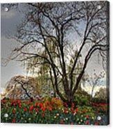 Enchanted Garden Acrylic Print