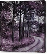 Enchanted Seney Path Acrylic Print
