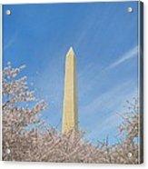 Enchanting Spring In Washington Acrylic Print
