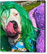 End Bsl You Cant Arrest Me Cause I'm Lady Gaga Acrylic Print by Q's House of Art ArtandFinePhotography