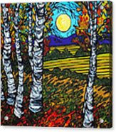 End Of Summer Birches Acrylic Print