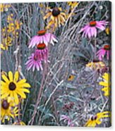 End Of Summer Acrylic Print