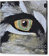 Endangered Eye I Acrylic Print