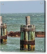 Endlessly Staring Out To Sea Acrylic Print by Wendy J St Christopher