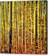 Energy Of The Forest Autumn Color Acrylic Print