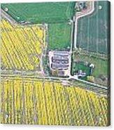 English Farm Acrylic Print