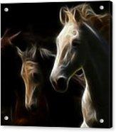 Enlightened Equestrian Acrylic Print