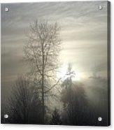 Fog Of Enlightenment Acrylic Print