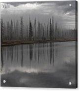 Enshrouded By Fog Acrylic Print