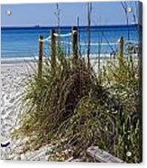 Enter The Beach Acrylic Print by Susan Leggett