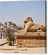 Entrance Sculpture By The Temple Of Karnak Acrylic Print