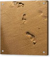 Ephemeral Footprints  Acrylic Print