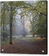 Epping 3 Acrylic Print by David  Hawkins