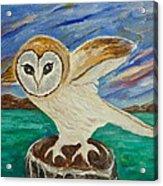 Equinox Owl Acrylic Print