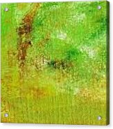Essay Star Green Acrylic Print