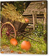 Essence Of Autumn  Acrylic Print by Doug Kreuger