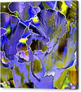 Etchings Of Purple And Green Acrylic Print