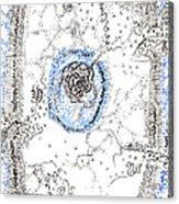 Eukaryotic Acrylic Print