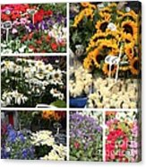 European Flower Market Collage Acrylic Print