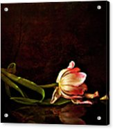 Even Though A Flower Fades Acrylic Print