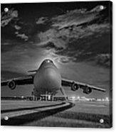 Evening Flight Acrylic Print