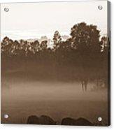 Evening Fog Acrylic Print