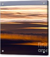 Evening Golds Acrylic Print