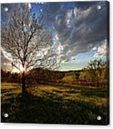 Evening In The Park Acrylic Print