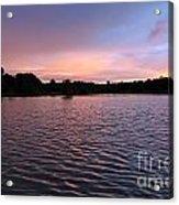Evening Light Amazon River Acrylic Print