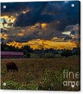 Evening On The Farm One Acrylic Print