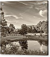 Evening Pond Sepia Acrylic Print