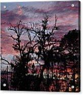 Evening Sky Color Acrylic Print by Ella Char