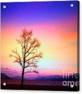 Evening Sky Acrylic Print