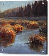 Ever Flowing Alaskan Creek In Autumn Acrylic Print