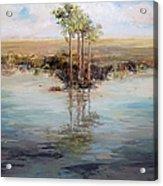 Everglade Palms Acrylic Print