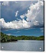 Everglades 0254 Acrylic Print