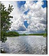 Everglades Lake - 0278 Acrylic Print