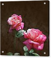Everlasting Roses Acrylic Print