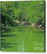 Everywhere Green Acrylic Print