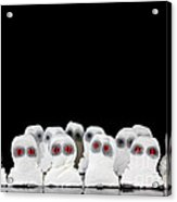 Evil White Ghosts In A Crowd With Black Space Acrylic Print