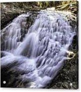 Evolution Waterfall Acrylic Print