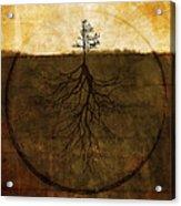 Exemplar Acrylic Print by Brett Pfister