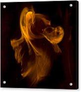 Exorcism Acrylic Print