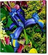 Exotic Blue Acrylic Print