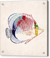 Exotic Tropical Fish Drawing Acrylic Print