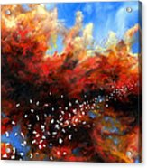 Explosion In The Sky Acrylic Print