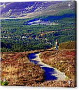 Extasy In Cairngorms National Park Scotland Acrylic Print