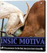 Extrinsic Motivation De-motivational Poster Acrylic Print