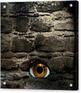 Eye In Brick Wall Acrylic Print