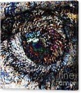 Eye Of A Hurricane Called You Acrylic Print